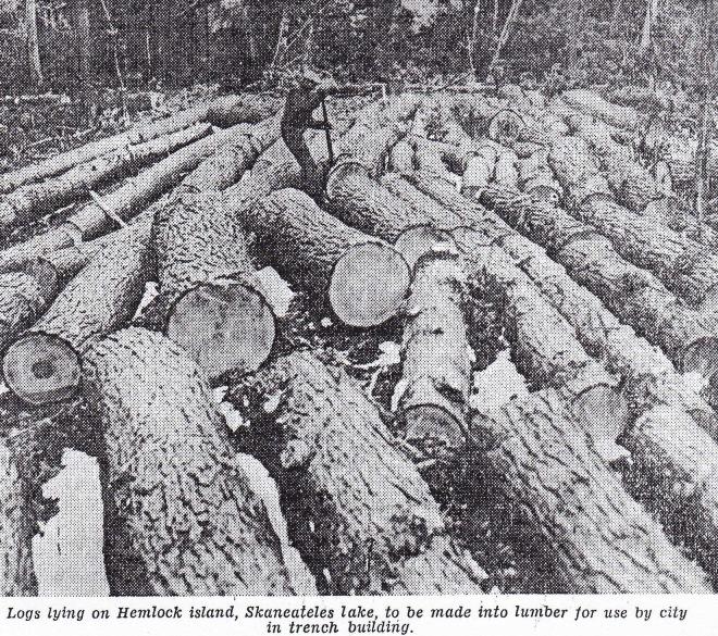 Hemlock-Logs-1