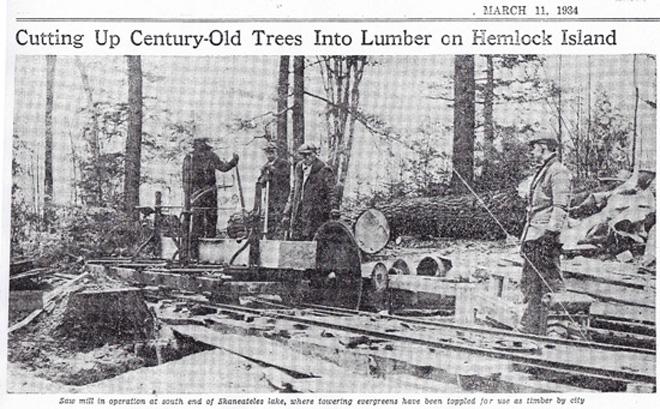 hemlock-logs-21