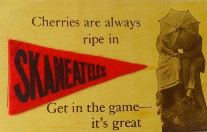 SK Pennant Cherries
