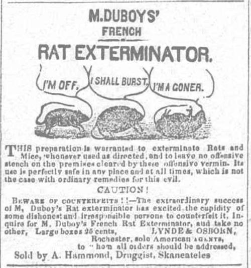 Rat Exterminator Democrat 1851