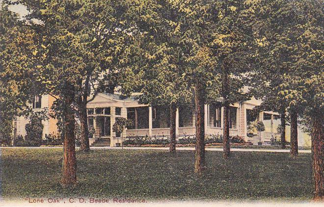 Postcard Lone Oak Beebe