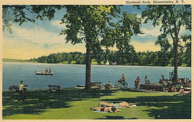 Shotwell Park Tinted